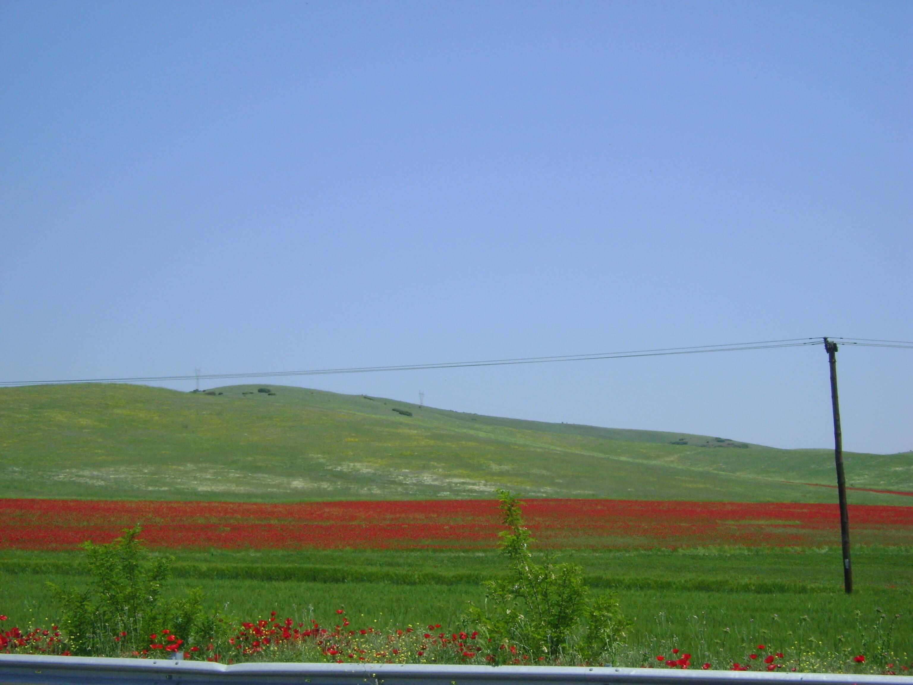 thessaly ksd photo
