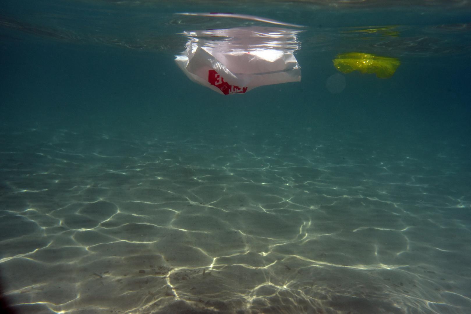 wwf plastic pollution